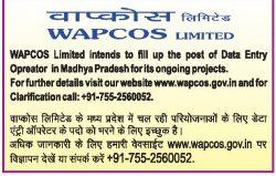 WAPCOS Limited Advertisement