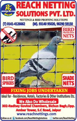 Reach Netting Solutions Pvt Ltd Ad