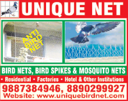 Unique Net Anti Bird Net Ad