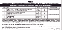 state-bank-of-india-requires-deputy-general-manager-ad-times-ascent-delhi-24-07-2019.png
