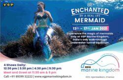 vgp-marine-kingdom-be-enchanted-by-a-real-life-mermaid-ad-chennai-times-13-01-2021]